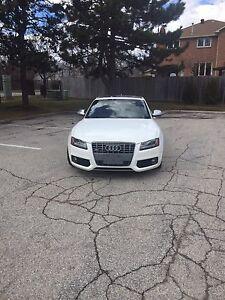 2008 Audi s5 BRAND NEW CLUTCH