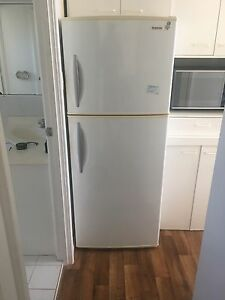 Simpsons fridge Burleigh Waters Gold Coast South Preview