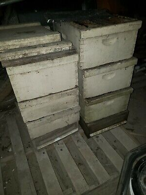 2 Complete Langstroth Bee Hive 6-box 57-frame 2-topbottom Smoker Queen Excluder