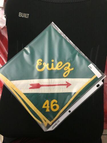 ERIEZ LODGE 46 NECKERCHIEF ORDEAL EMBROIDERY ...G23