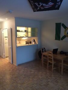 Bachelor Apartment May-August Sublet