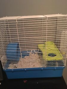 Russian male dwarf hamster cage and all