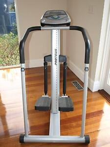 Stepper (Stairmaster) Machine. Gym Quality. Electronic. Like New Kooyong Stonnington Area Preview