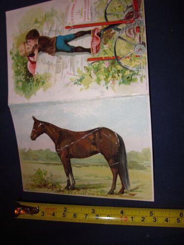 Vintage D.M. Osborne Farm Impliment Promotional Card w/Horse on Back