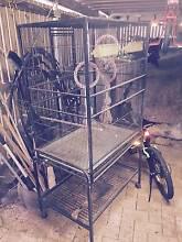 Large Bird Cage Bridgeman Downs Brisbane North East Preview