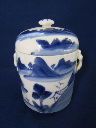 Original Antique 19th C. Chinese Qing Dynasty Blue & White Porcelain Tea Caddy