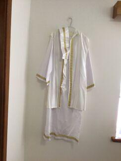 Arabian Costume size medium to large