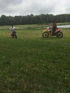 125cc pittbike crossfire