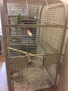 White cage for ringneck / cockatiels