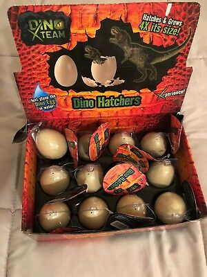 New Lot of 12 Dino Egg Hatchers Uncle Milton Dino X Team - Dino Egg