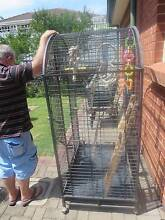 Large Patio Aviary Athelstone Campbelltown Area Preview
