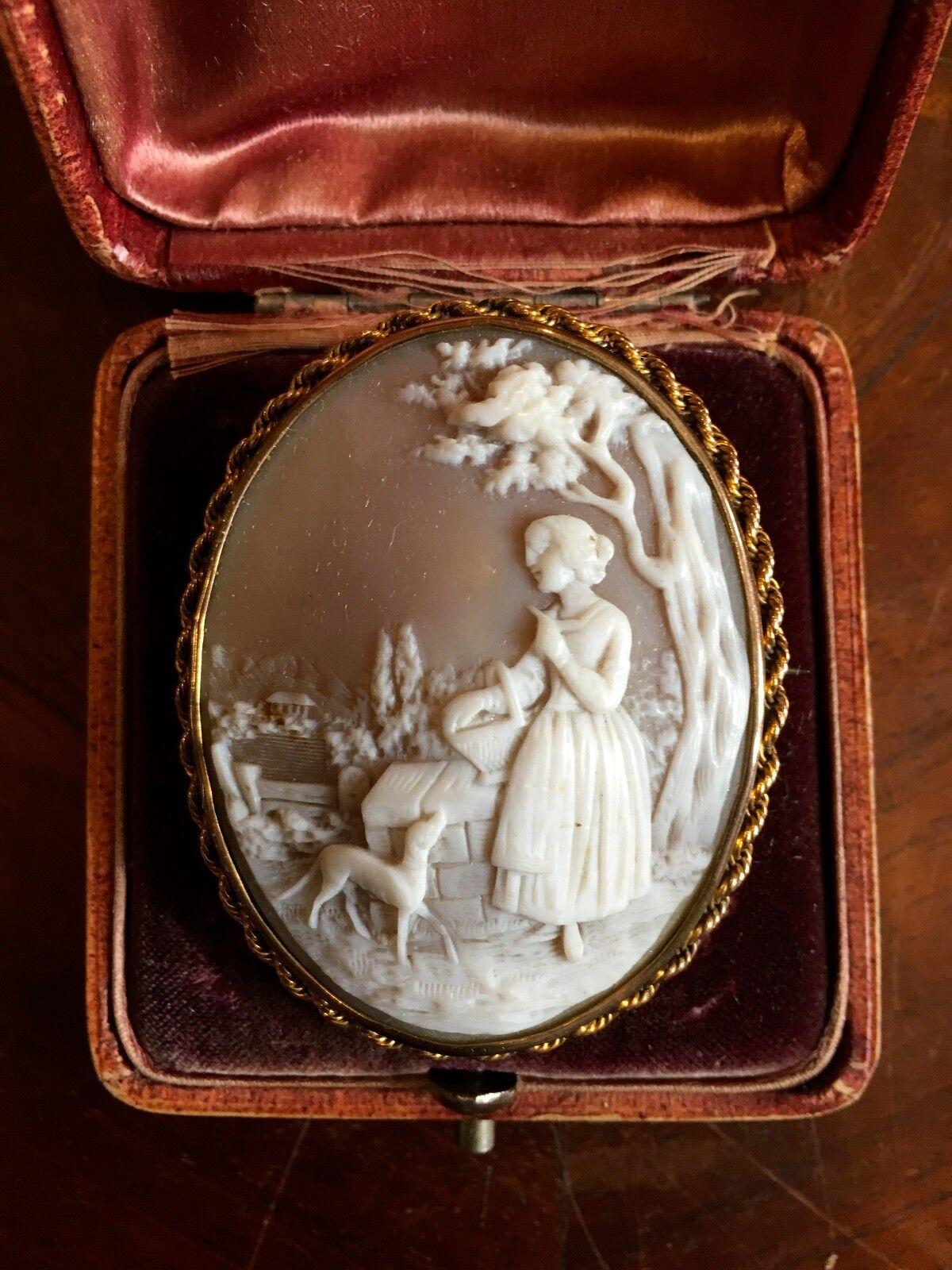 Antike Kamee CameoFassung 333 Gold Si. vergoldet, Original Schatulle um 1860