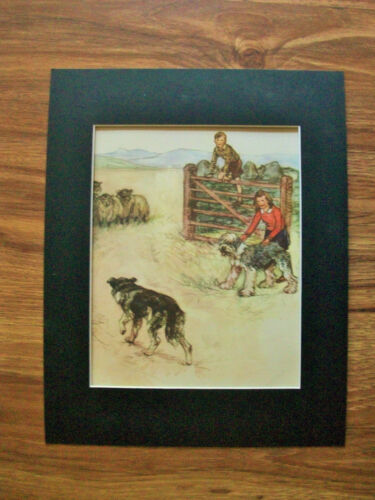 Print Sheepdog Collie Vernon Stokes Children Herding Sheep Bookplate 1947 Matted