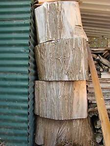 PINE STUMPS (FIRE WOOD OR CAN BE MADE INTO FURNITURE) $40 each Broken Hill Central Broken Hill Area Preview