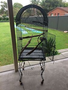 Bird/Parrot Cage Buff Point Wyong Area Preview
