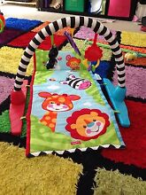 Baby play mat Jamboree Heights Brisbane South West Preview