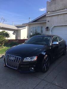 2012 Audi S5 - PRICE REDUCED! MUST GO!