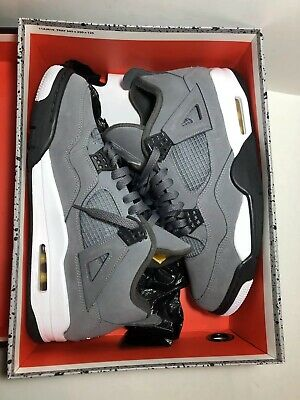 Air Jordan 4 Retro Cool Grey 2019 Mens Basketball Shoes Size 11 308497 007