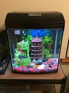 Fish tank and fish Applecross Melville Area Preview