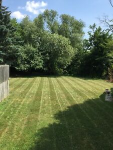 Lawn Care ( Durham Region, Northumberland County )