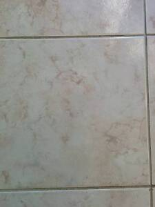 Ceramic Tiles Revesby Bankstown Area Preview