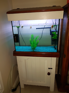 2ft tank in cabinet with hood, everything included Windella Maitland Area Preview