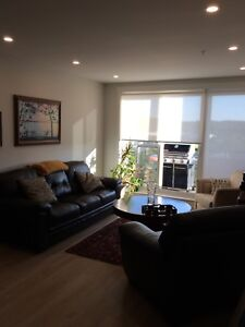 Room for rent in 2 bedroom apartment.