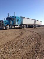Casual experienced super b grain hauler wanted.