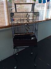 Bird cage Mount Pleasant Melville Area Preview