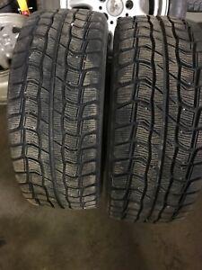 Dunlop Graspic ds-1