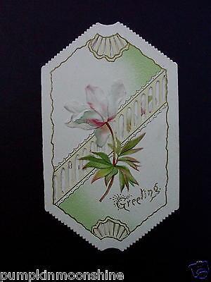 H523- Vintage Unused 1900's Tri Fold Xmas Greeting Card Old Fashioned Flower