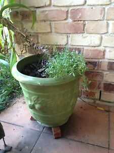 Two large lime green colour ceramic pots Morayfield Caboolture Area Preview
