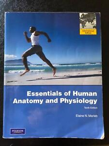 Essentials of anatomy and physiology marieb textbooks gumtree essentials of anatomy and physiology marieb textbooks gumtree australia free local classifieds fandeluxe Images