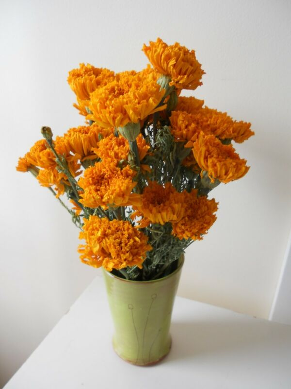 Dried Flowers - Marigolds - 30 Total Stems - Homegrown in PA
