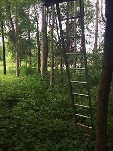 Ladder - 15-20 foot. In great shape.