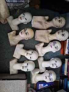 9 Mannequin Headblocks Loganlea Logan Area Preview