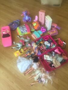 Barbie Collection and accessories