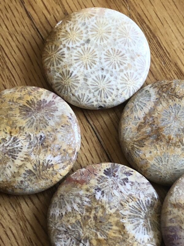 Old Stock Brown Pink Natural Chrysanthemum Coral Fossil Pendant Bead Lot