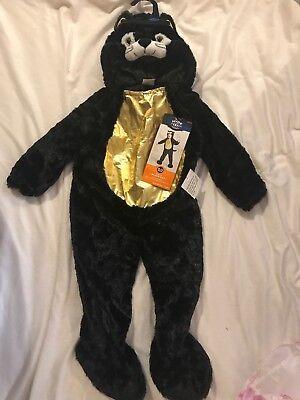 Black Cat Toddler Costume (Black Cat Toddler Costume Hyde and Eek 18 24)