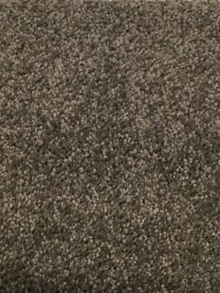 Carpet 3.66 wide