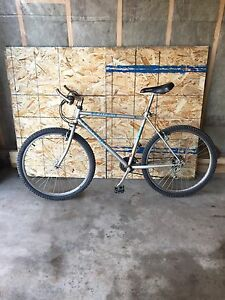 Raleigh Teenager Boys Bike