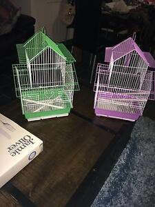 Baby English budgies with new cage Dapto Wollongong Area Preview