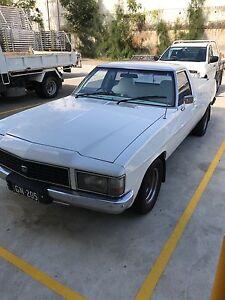 1980 WB Holden ute Pendle Hill Parramatta Area Preview