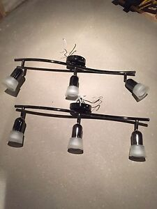 2 - 3 light track light fixture with bulbs