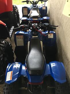 Kids Polaris quad bike