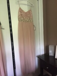 Adrianna Papell Blush Sequence Gown