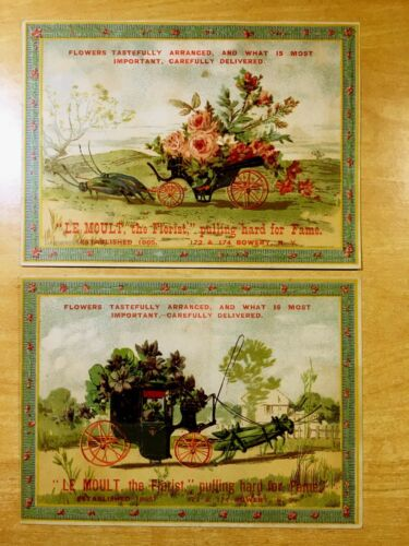2 Large Victorian Trade Cards LE MOULT, THE FLORIST c1882 BOWERY New York