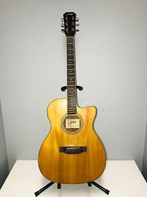 Austin AA25-0 Electric Guitar