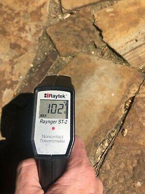 Raytek Raynger St 2 Infrared Thermometer