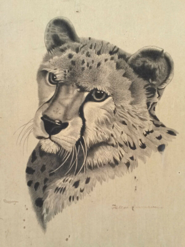 Rare Original FRIDTJOV HERMANSEN Brush/Ink Study of a Cheetah Circa 1920